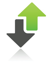 Assess Icon
