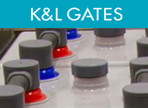Panelist, K & L Gates 3rd Annual Energy Storage Conference